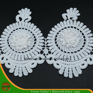 2017new Design Embroidery Lace on Organza (HJKL-1701)